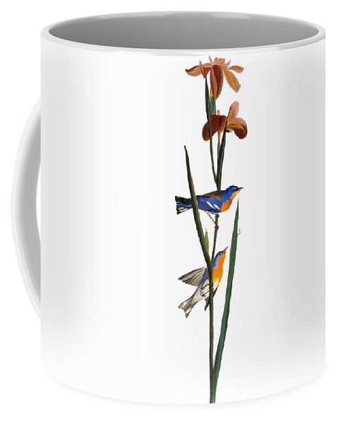 1827 Coffee Mug featuring the photograph Audubon: Warbler, 1827 by Granger