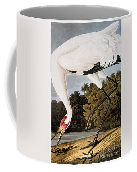 1827 Coffee Mug featuring the photograph Audubon: Whooping Crane by Granger