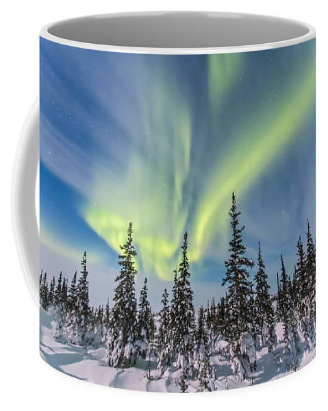 Aurora Coffee Mug featuring the photograph Aurora Borealis Over The Trees by Alan Dyer