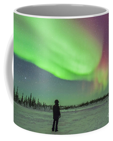Arcturus Coffee Mug featuring the photograph Aurora Borealis With Vega And Arcturus by Alan Dyer
