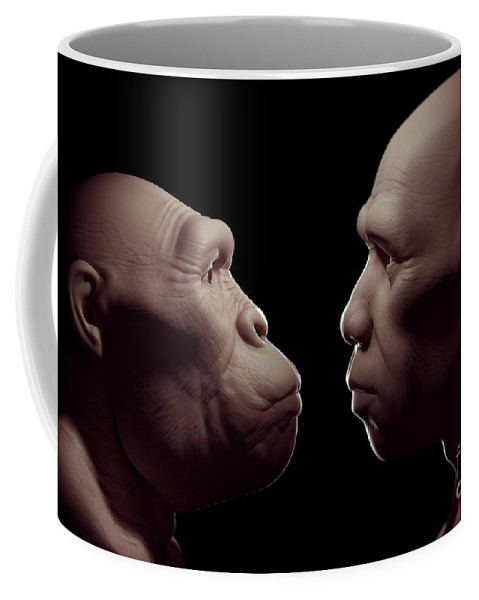 Digitally Generated Image Coffee Mug featuring the photograph Australopithecus With Homo Sapiens by Science Picture Co