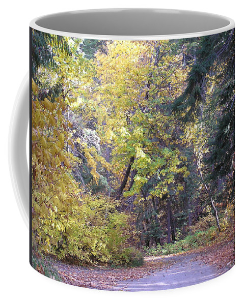 Autumn Photographs Coffee Mug featuring the photograph Autum Colors by Louise Magno