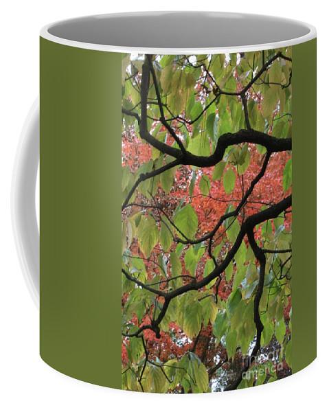 Fall Coffee Mug featuring the photograph Autumn 7 by Carol Groenen