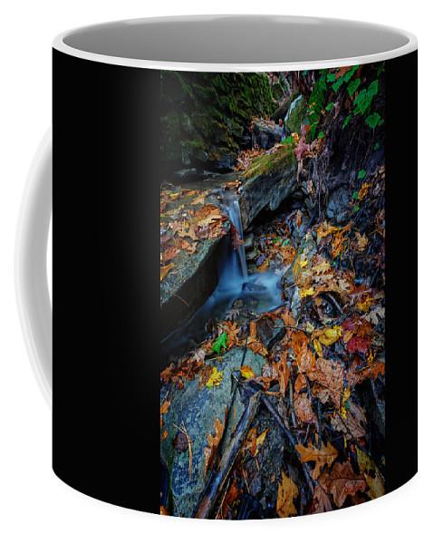 Autumn Coffee Mug featuring the photograph Autumn At A Mountain Stream by Rick Berk
