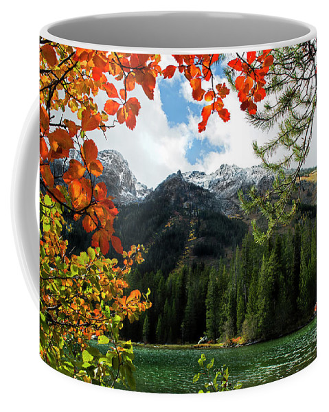 String Lake Coffee Mug featuring the photograph Autumn At String Lake by Wildlife Fine Art