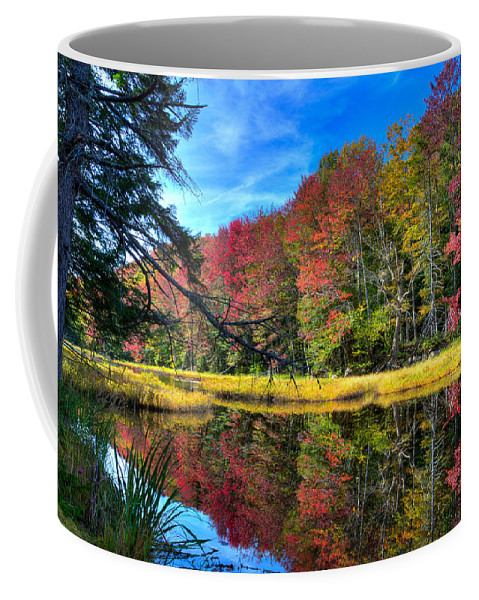 Autumn At The Pond Coffee Mug featuring the photograph Autumn At The Pond by David Patterson