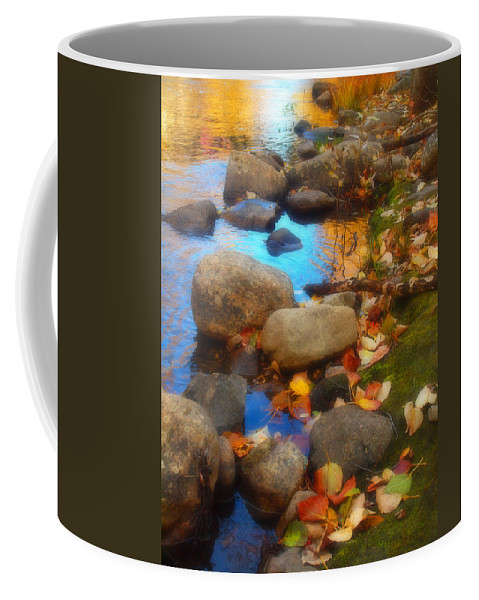 Autumn Coffee Mug featuring the photograph Autumn By The Creek by Tara Turner