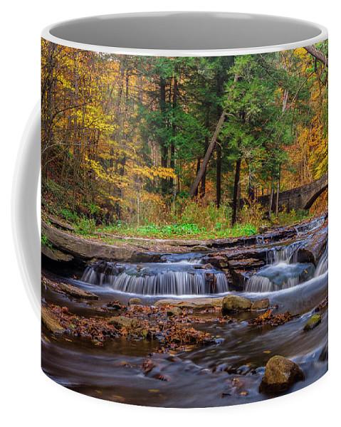 Office Decor Coffee Mug featuring the photograph Autumn Cascades by Mark Papke
