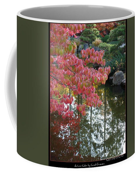 Colorful Coffee Mug featuring the photograph Autumn Color Poster by Carol Groenen