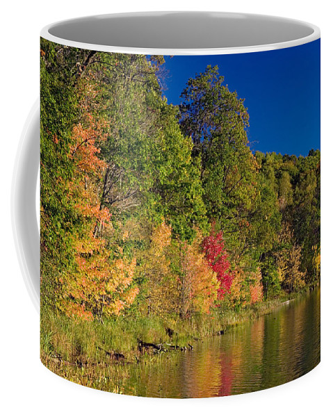 Photography Coffee Mug featuring the photograph Autumn Color Trees Along Beauty Lake by Panoramic Images