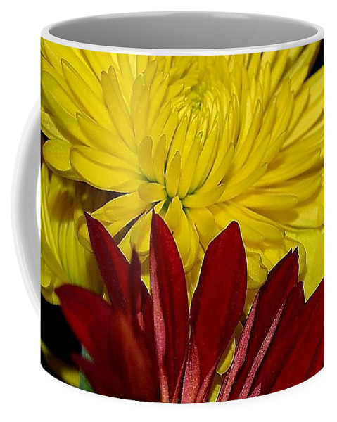 Chrysanthemum Photography Coffee Mug featuring the photograph Autumn Colors by Patricia Griffin Brett