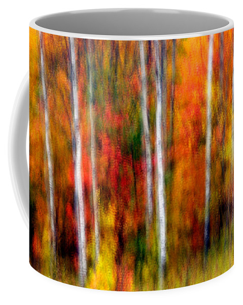 Canada Coffee Mug featuring the photograph Autumn Dreams by Doug Gibbons