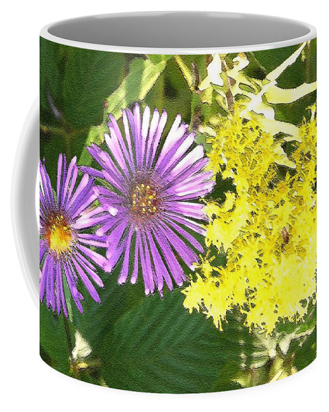Aster Coffee Mug featuring the photograph Autumn Duo by Nelson Strong