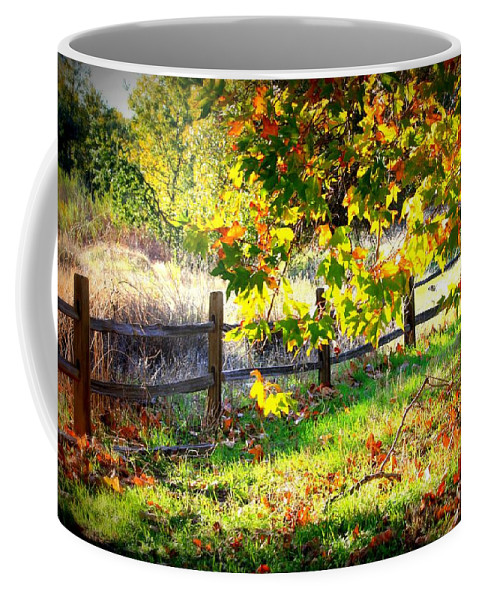 Fences Coffee Mug featuring the photograph Autumn Fence by Carol Groenen