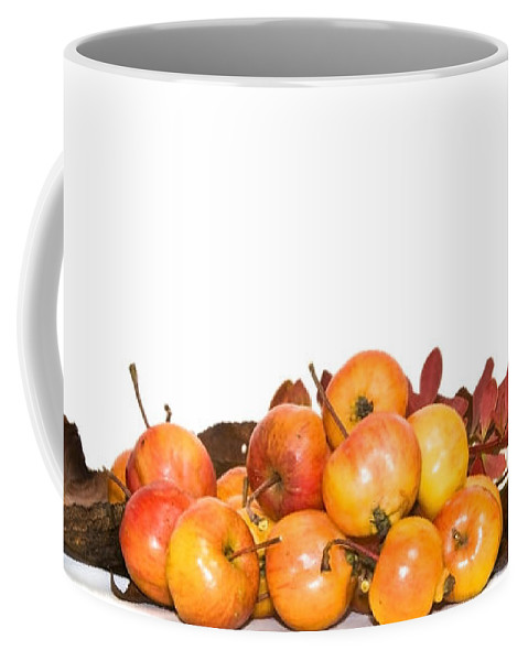 Autumn Coffee Mug featuring the photograph Autumn Friuts And Leaves by Svetlana Sewell