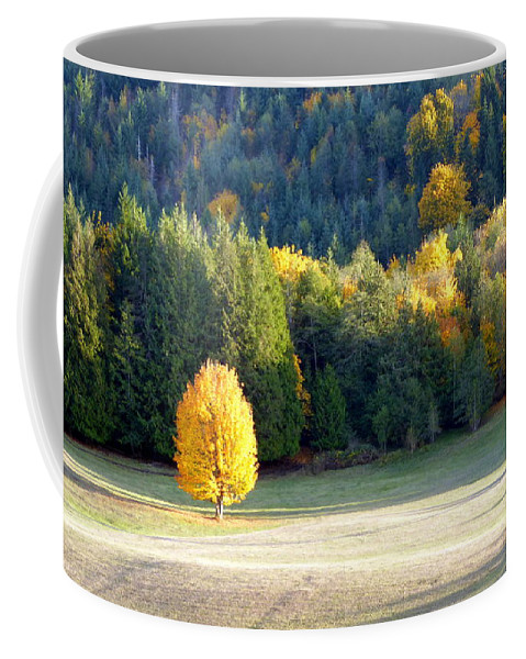 Autumn Coffee Mug featuring the photograph Autumn Gold by Elaine Bawden