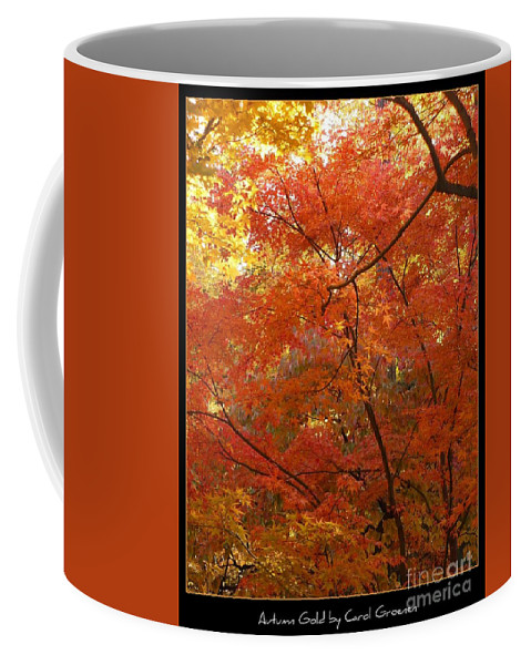 Fall Coffee Mug featuring the photograph Autumn Gold Poster by Carol Groenen
