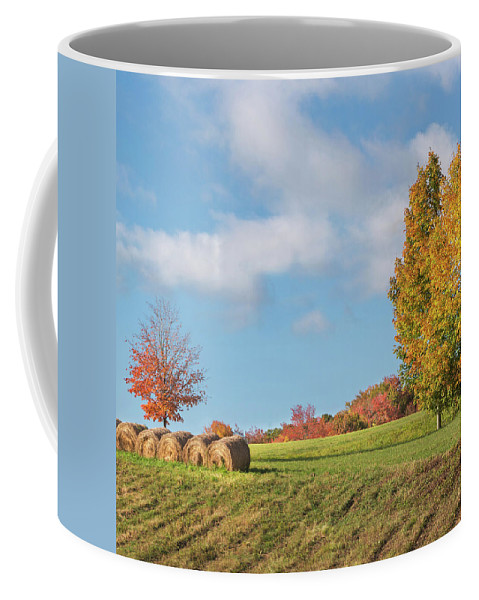 Autumn Coffee Mug featuring the photograph Autumn Hay Square by Bill Wakeley