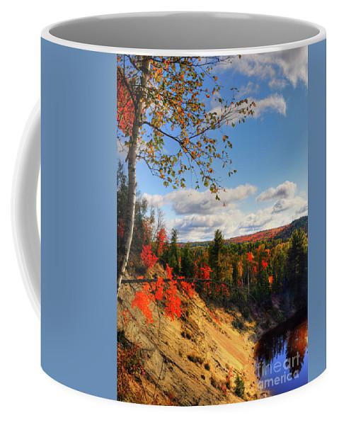 Autumn Coffee Mug featuring the photograph Autumn In Arrowhead Provincial Park by Oleksiy Maksymenko