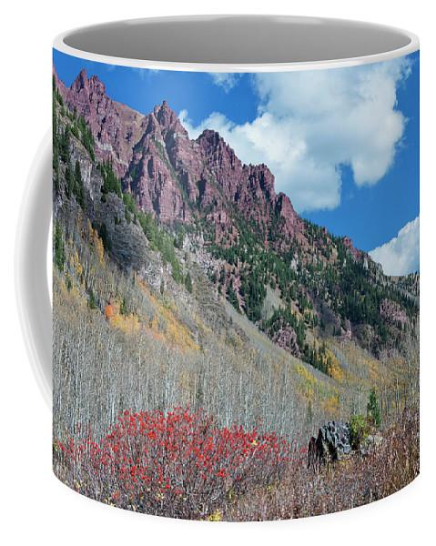 Aspen Coffee Mug featuring the photograph Autumn In The Aspen Hills by Joan Carroll