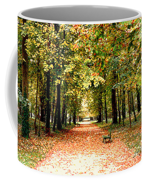 Autumn Coffee Mug featuring the photograph Autumn In The Park by Nancy Mueller