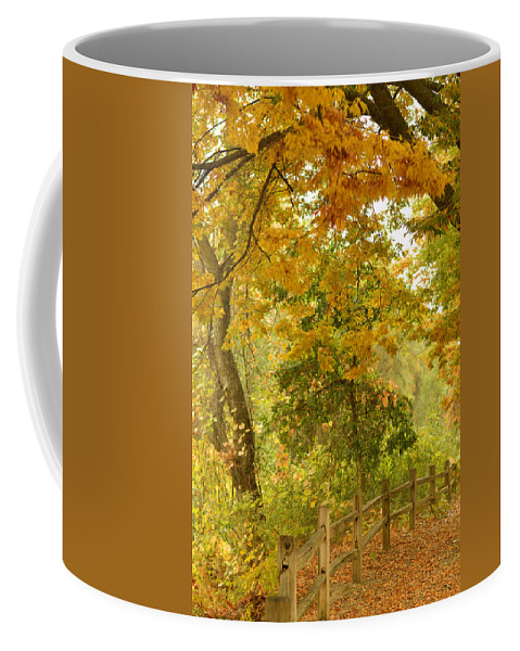 Autumn Coffee Mug featuring the photograph Autumn In The Park by Pamela Patch