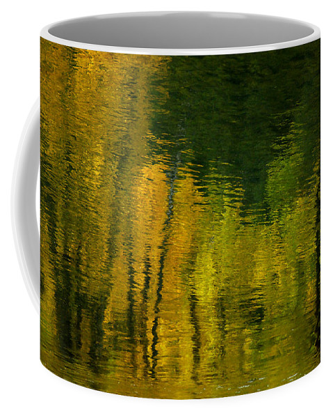 Water Coffee Mug featuring the photograph Autumn In Truckee by Donna Blackhall