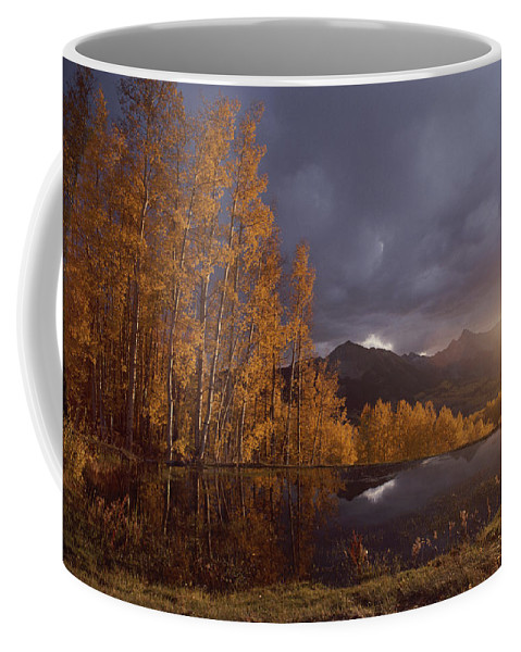 North America Coffee Mug featuring the photograph Autumn Landscape Near Telluride by Annie Griffiths