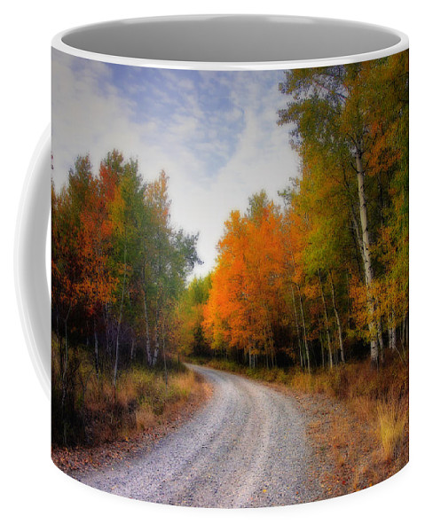 Fall Coffee Mug featuring the photograph Autumn Lane by Winston Rockwell
