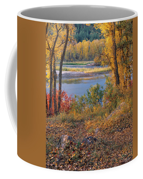 Idaho Scenics Coffee Mug featuring the photograph Autumn by Leland D Howard