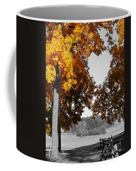 Landscape Coffee Mug featuring the photograph Autumn Love by September Stone