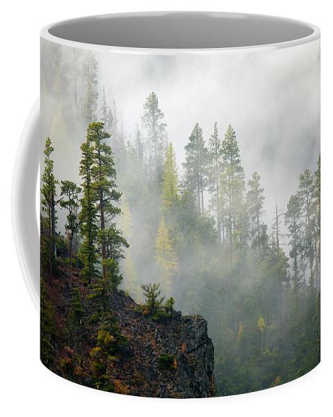 Ridges Coffee Mug featuring the photograph Autumn Mist by Mike Dawson
