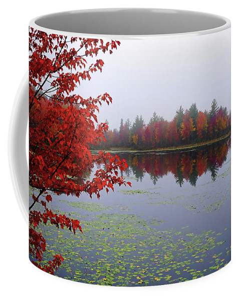 Autumn Fall Lake Bellamy River Reservoir Colors Coffee Mug featuring the photograph Autumn On The Bellamy by Wayne Marshall Chase