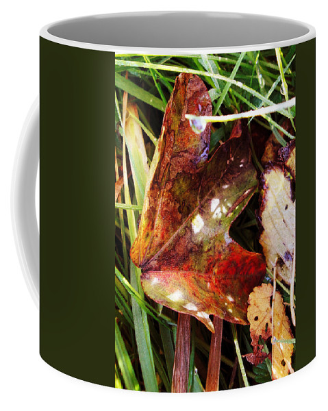 Coffee Mug featuring the photograph Autumn Palette by Susan Baker