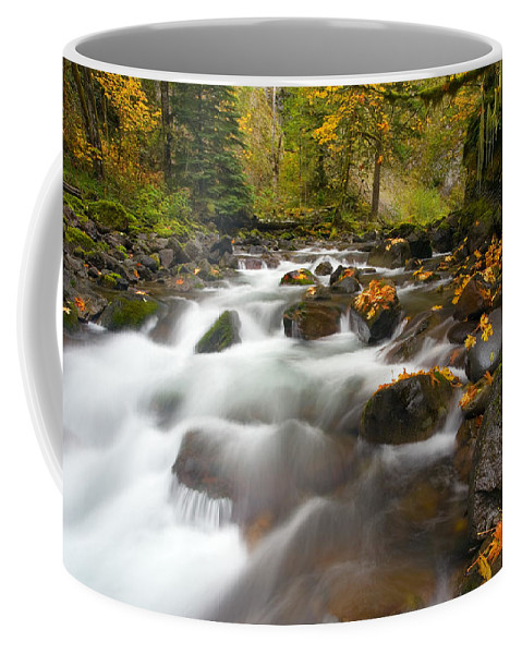 Stream Coffee Mug featuring the photograph Autumn Passages by Mike Dawson