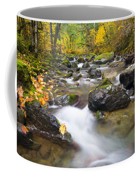 Fall Coffee Mug featuring the photograph Autumn Passing by Mike Dawson