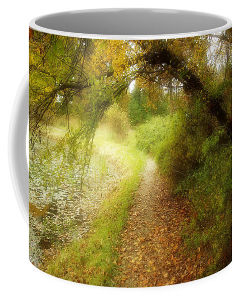 2d Coffee Mug featuring the photograph Autumn Path by Brian Wallace