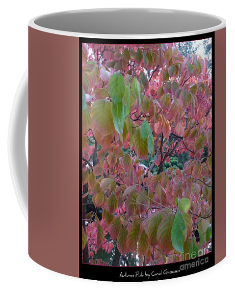 Fall Coffee Mug featuring the photograph Autumn Pink Poster by Carol Groenen