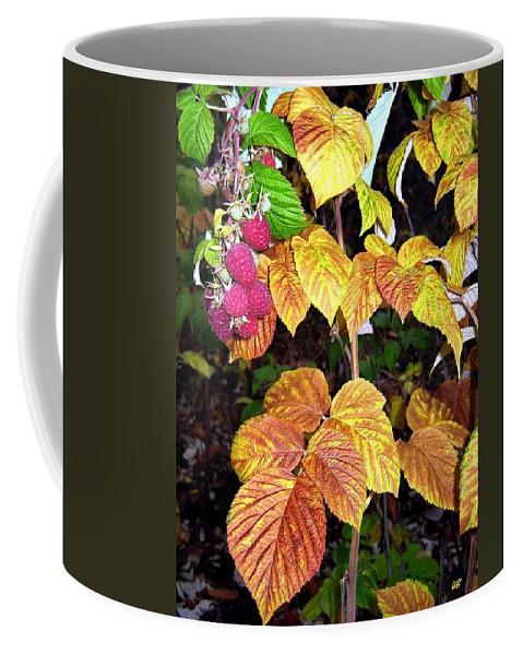 Autumn Coffee Mug featuring the photograph Autumn Raspberries by Will Borden