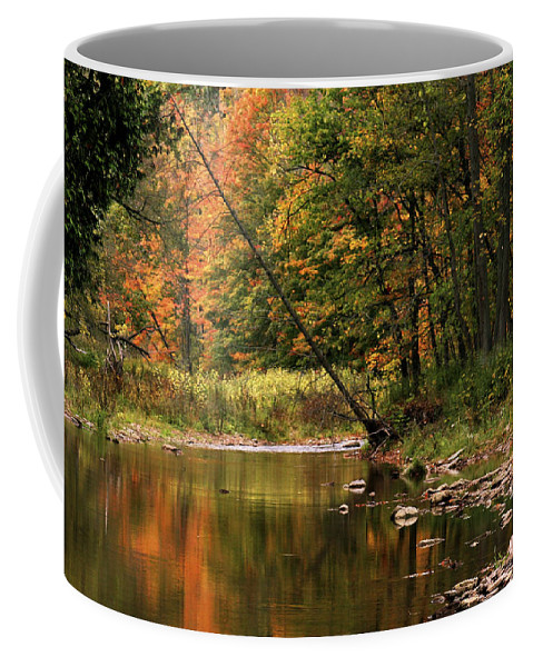 Tree Coffee Mug featuring the photograph Autumn Reflections by Phill Doherty