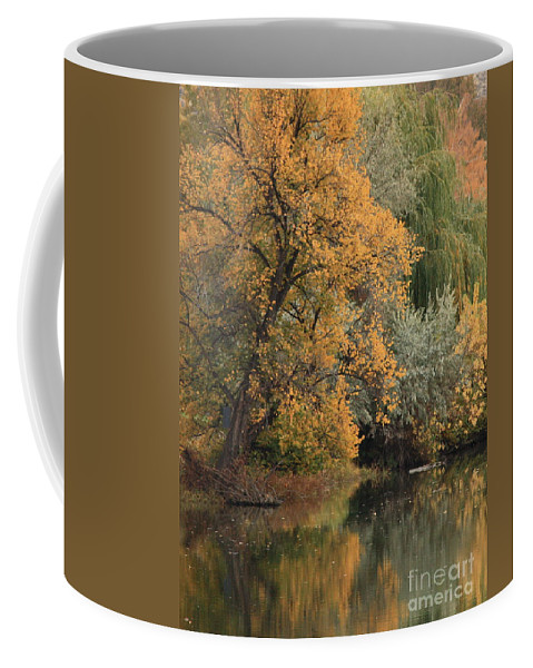 Landscape Coffee Mug featuring the photograph Autumn Riverbank by Carol Groenen