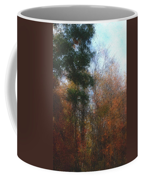 Nature Coffee Mug featuring the photograph Autumn Scene 10-23-09 by David Lane