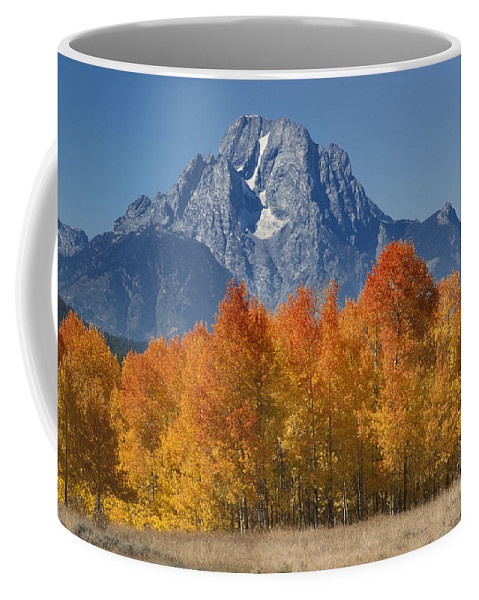 Grand Teton Coffee Mug featuring the photograph Autumn Splendor In Grand Teton by Sandra Bronstein