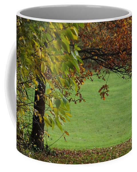 Prott Coffee Mug featuring the photograph Autumn Tree 1 by Rudi Prott
