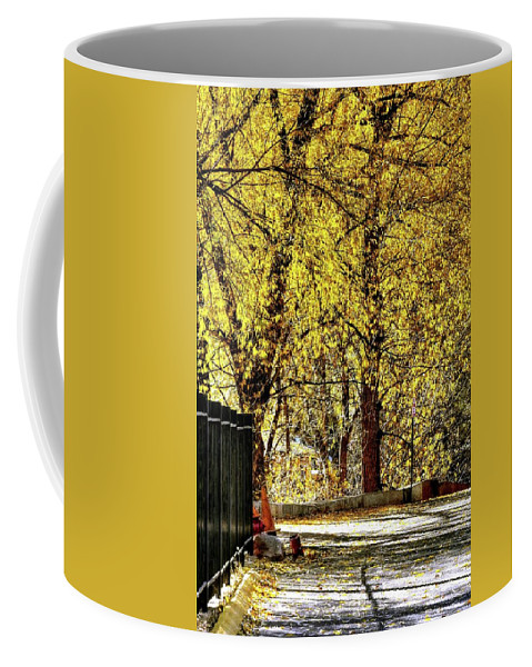Trees Coffee Mug featuring the photograph Autumn Walkway by Jerry Sodorff