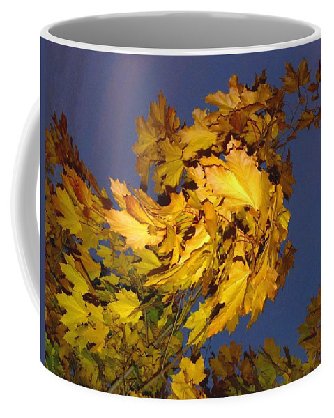 Maple Leaves Coffee Mug featuring the photograph Autumn Winds by Will Borden