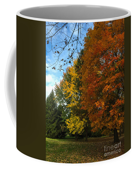 Autumn Coffee Mug featuring the photograph Autumn's Artwork by Stephanie Hanson