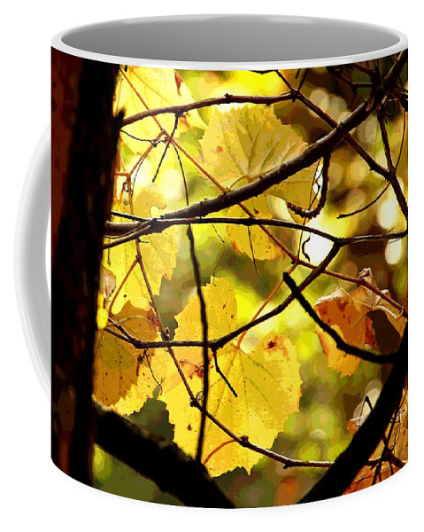 Autumn Coffee Mug featuring the photograph Autumn's Revelry by David Ross