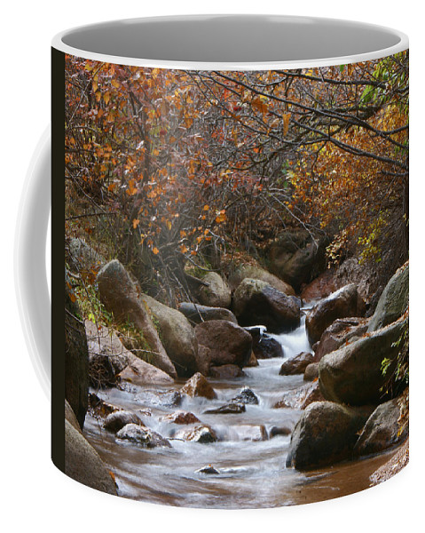 Autumn Coffee Mug featuring the photograph Autumns Flow by Ernie Echols