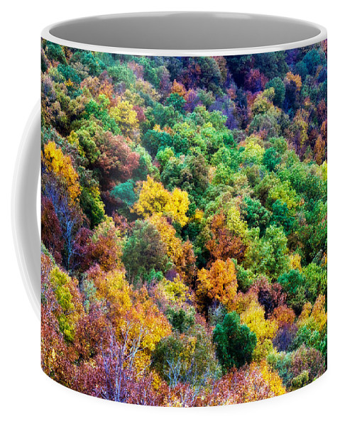 Autumn Coffee Mug featuring the photograph Autumn's Palette by Lana Trussell